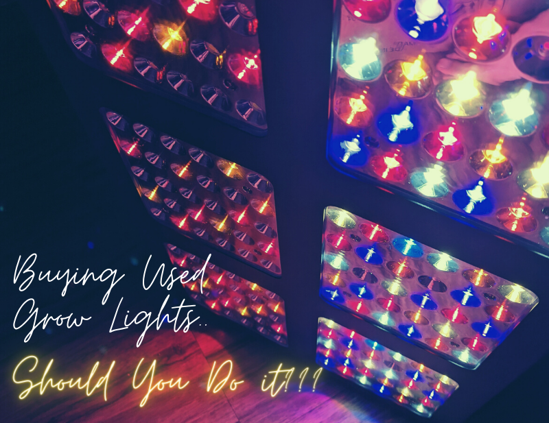 Should You Buy Used Grow Lights