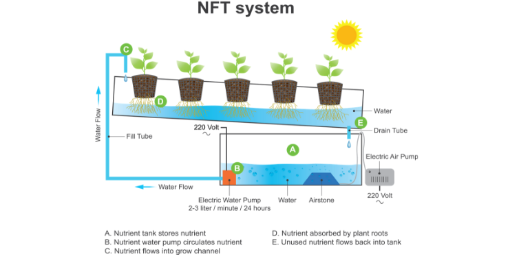 Nutrient Film Technique - NFT System Diagram