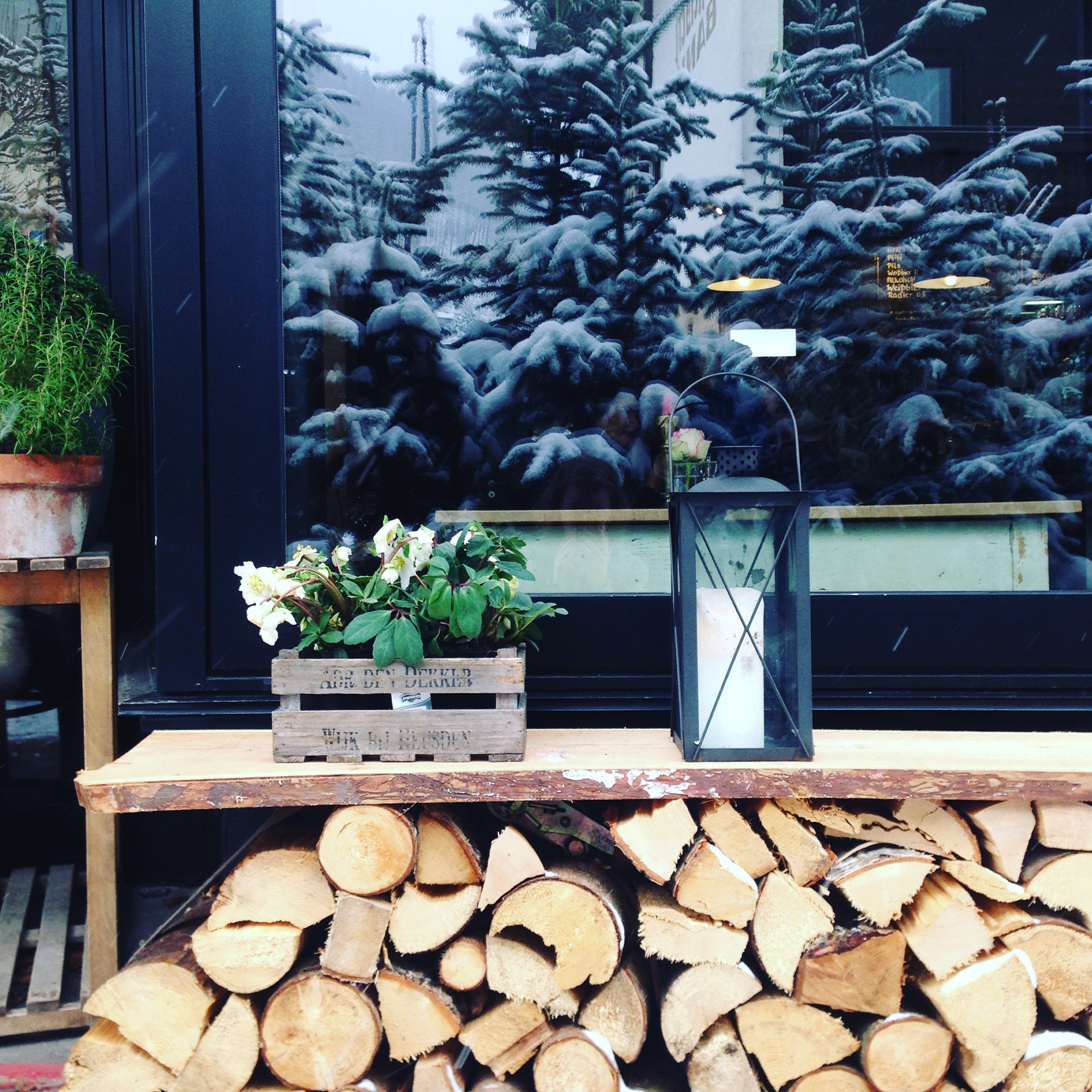 Holzscheite vor Haus