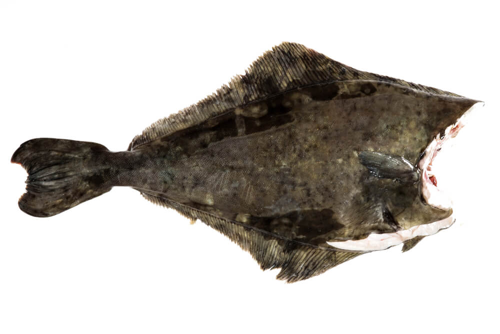 Kjernetemperatur fisk