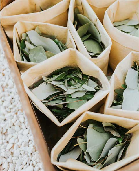 DIY wedding exit toss eco-friendly ideas
