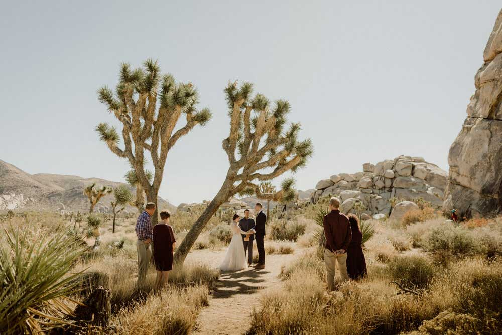 bride and groom in Joshua Tree National Park for their wedding elopement