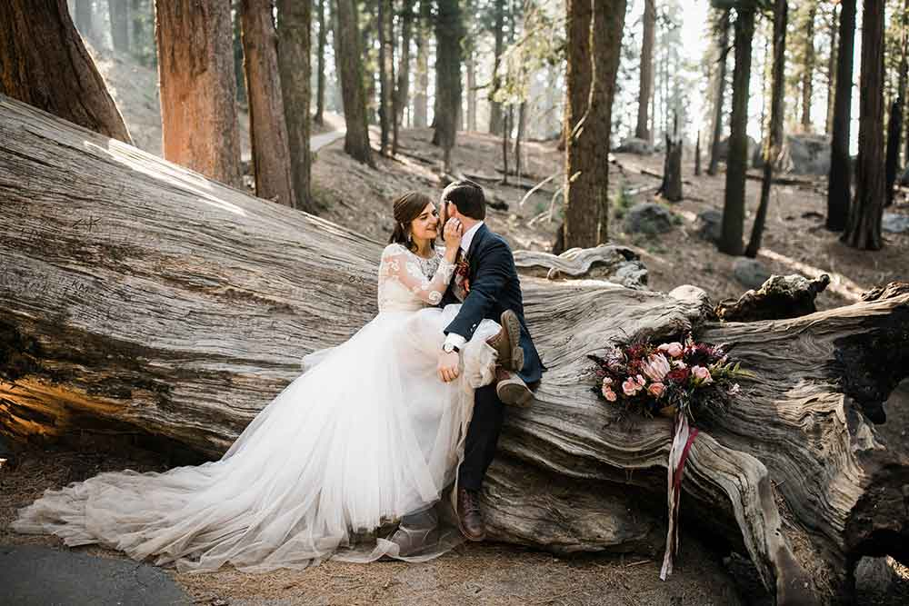 bride and groom in Sequoia National Park for their wedding elopement