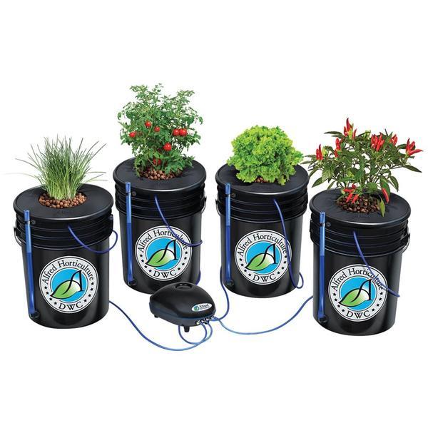 ALFRED DWC 4 Plant System