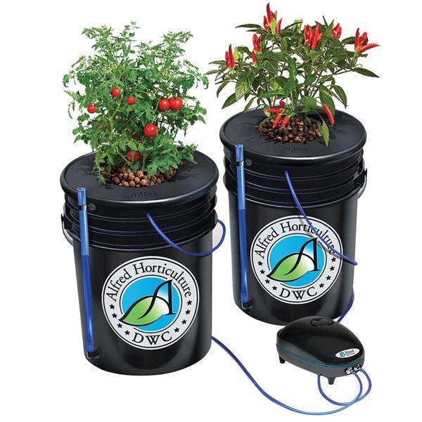 Alfred DWC 2 Plant system