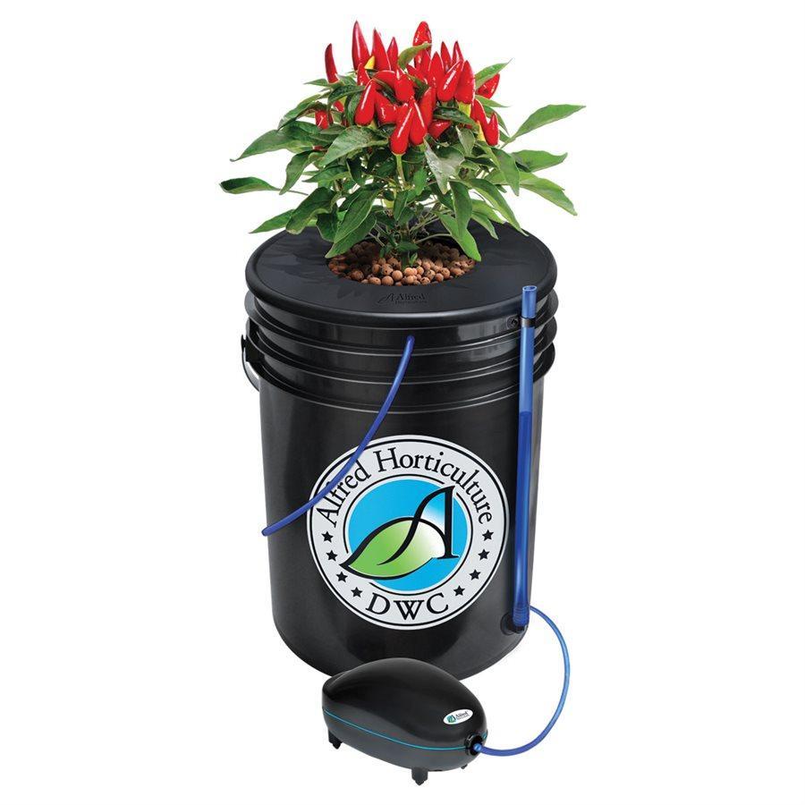 Alfred DWC 1 Plant System