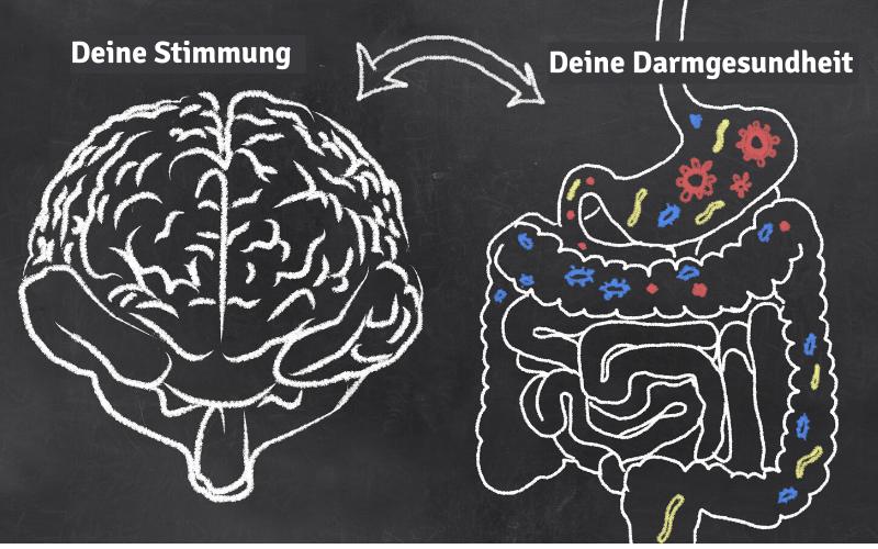 Grafik mit Abbildung vom Gehirn und daneben den Magen-Darm-Trakt. Die Grafik verdeutlicht den Zusammenhang zwischen Stimmung und Darmgesundheit.