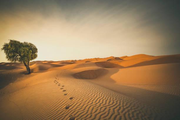 Le desert pour la méditation