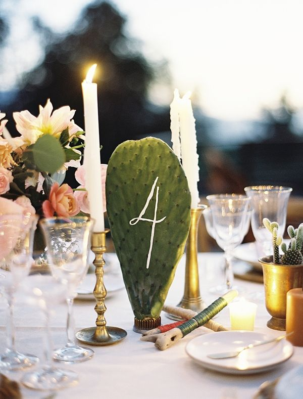 Cactus Table Numbers