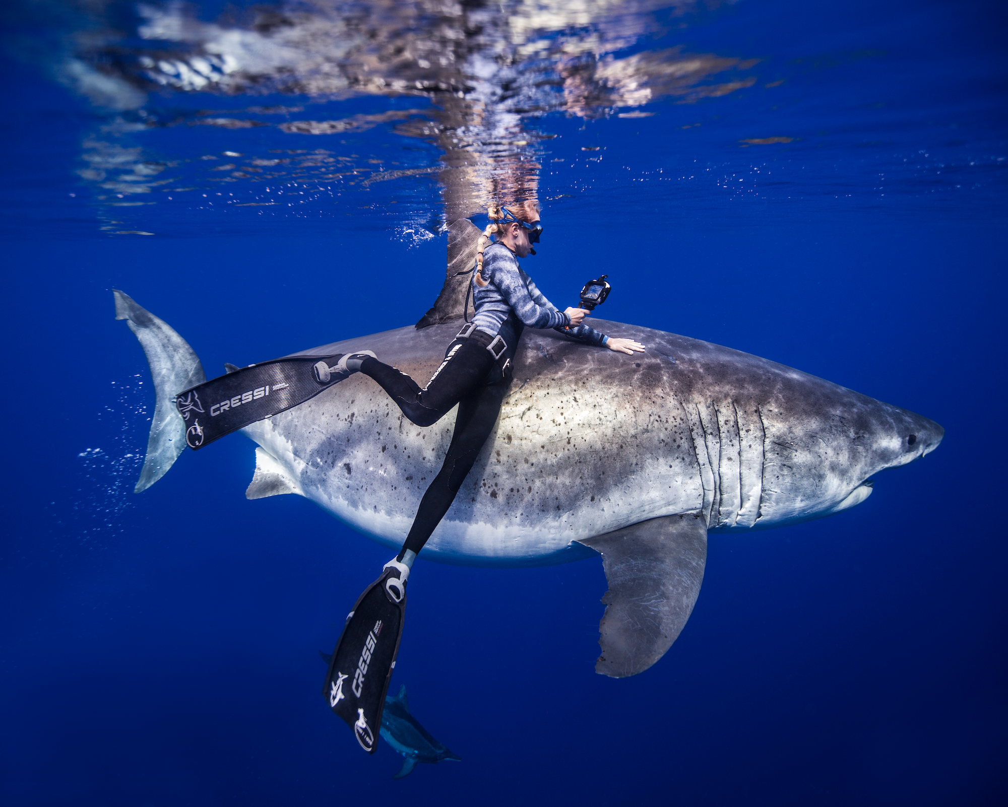 female diver swimming with shark