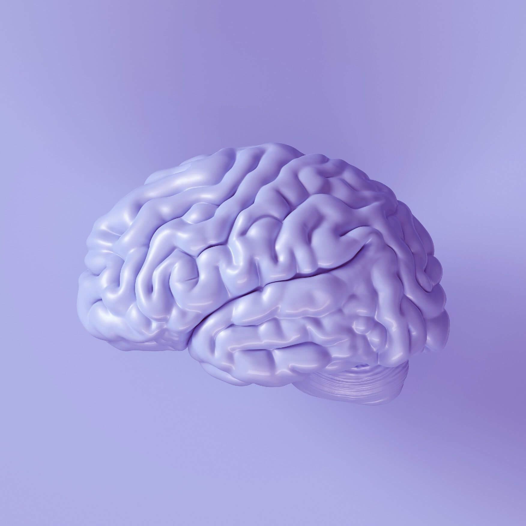 Nootropics For Brain Health
