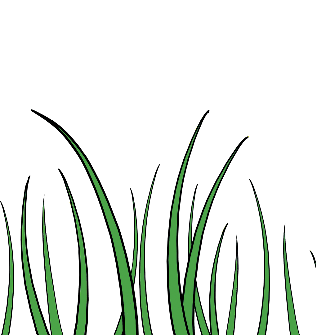 illustrated grass