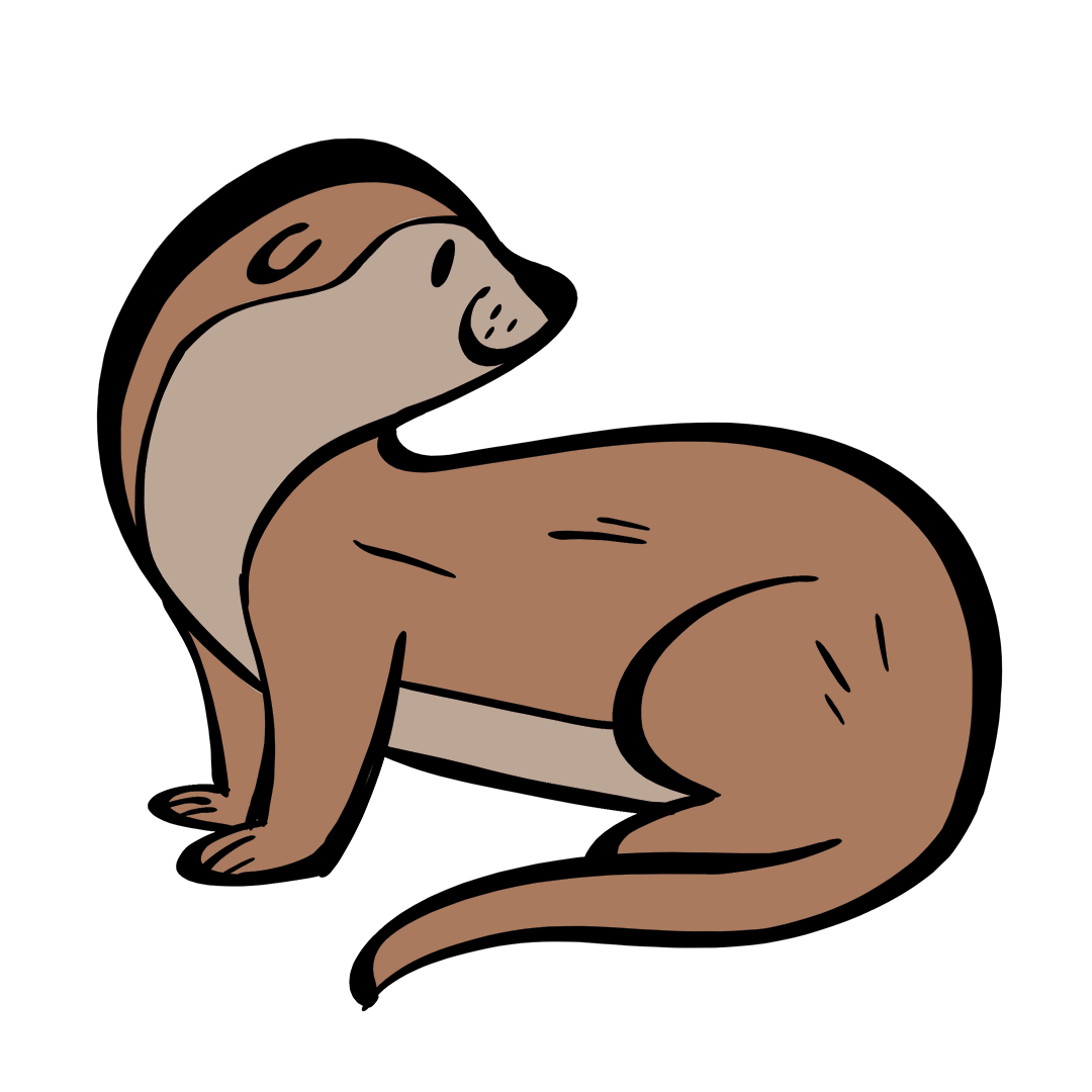illustrated otter