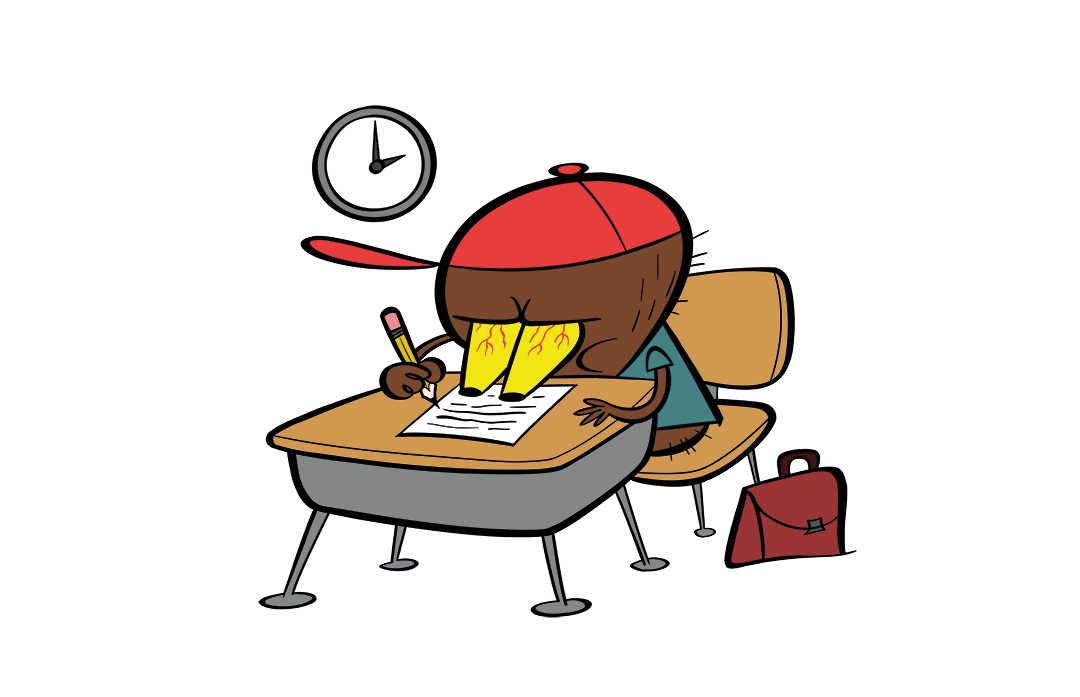 illustrated platypus at a desk