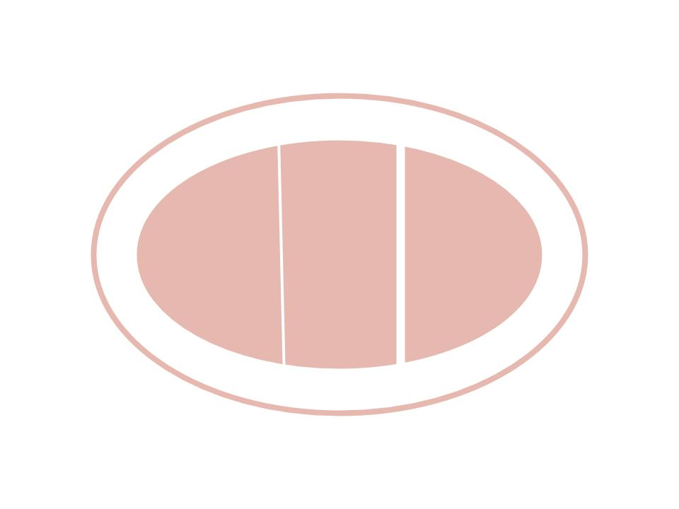 icon of a positive pregnancy test