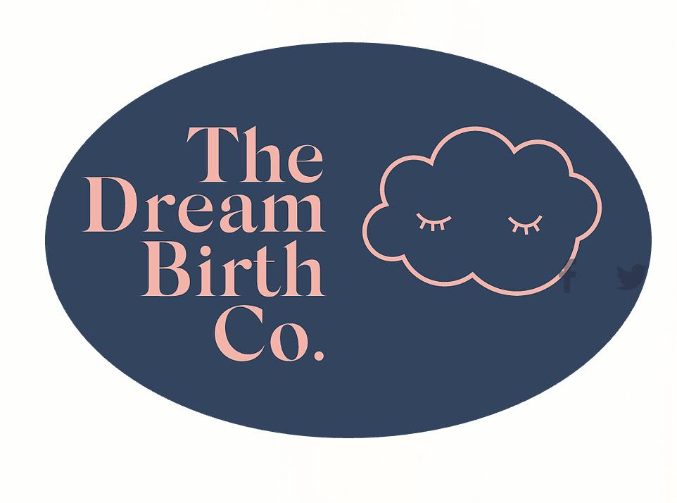 logo the dream birth company