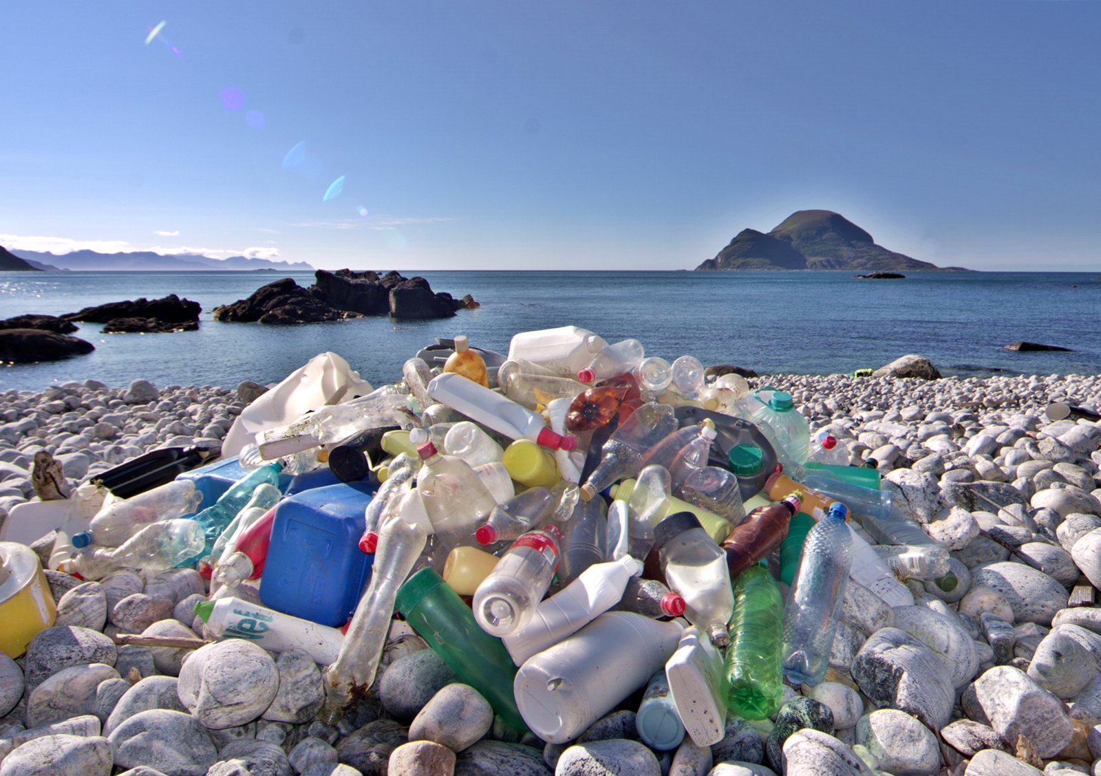 plastic bottles that have been pulled out of the sea