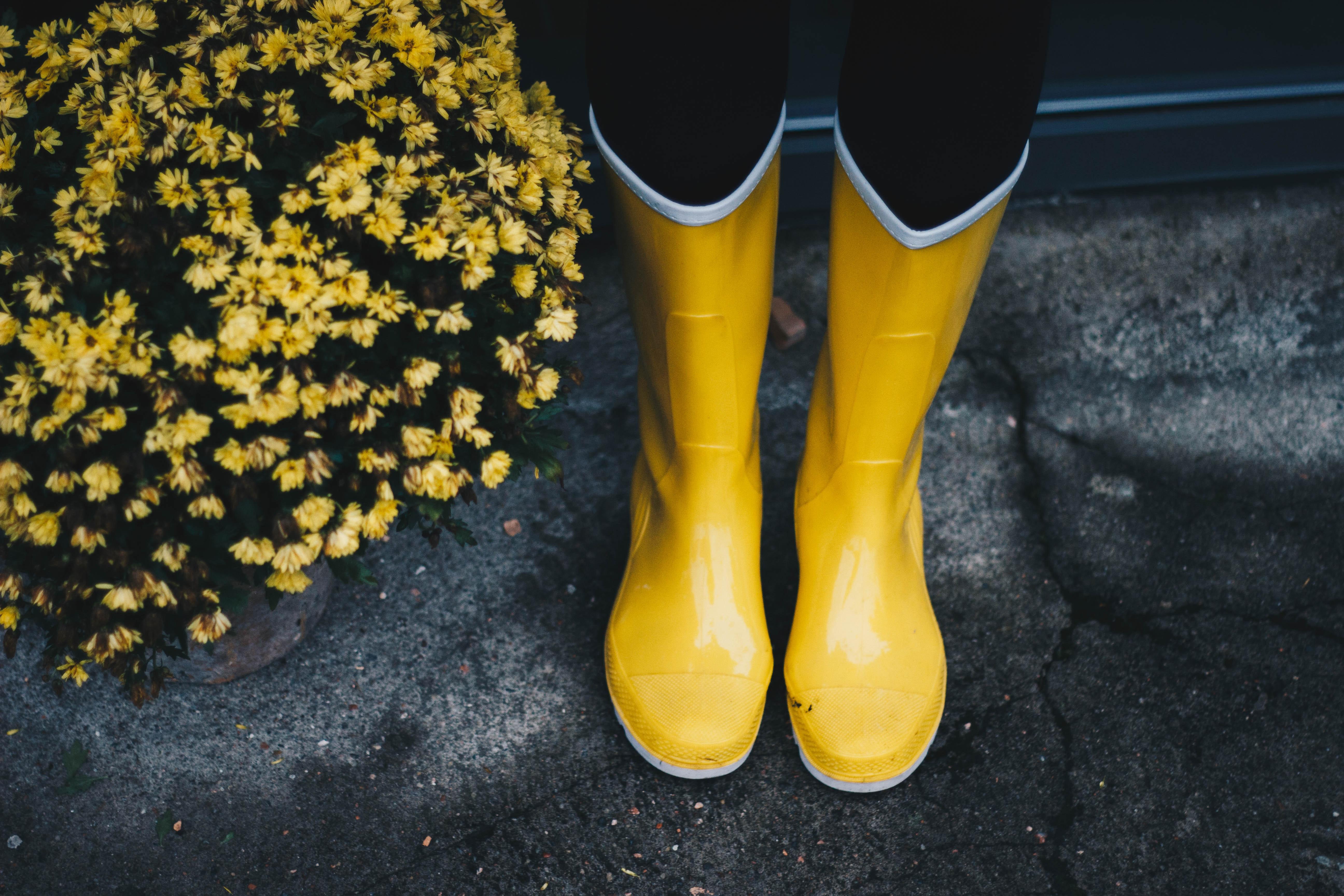 regn blöta sockar stövlar på sången