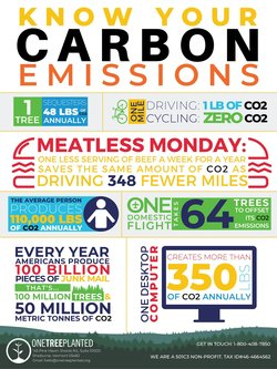 Carbon emission poster thumbnail