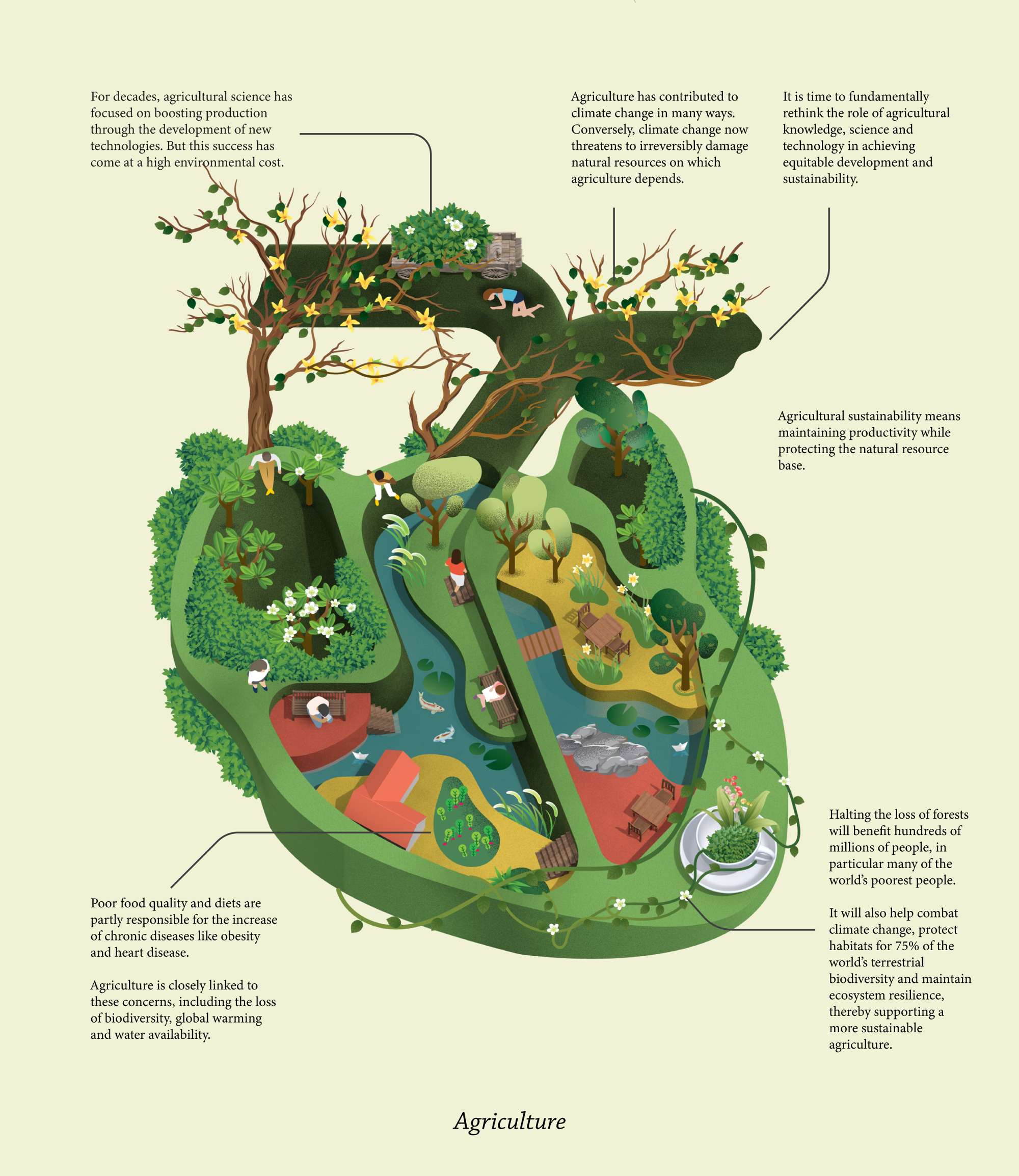illustrated shape of human heart with lots of greenery, trees, and people in different compartments
