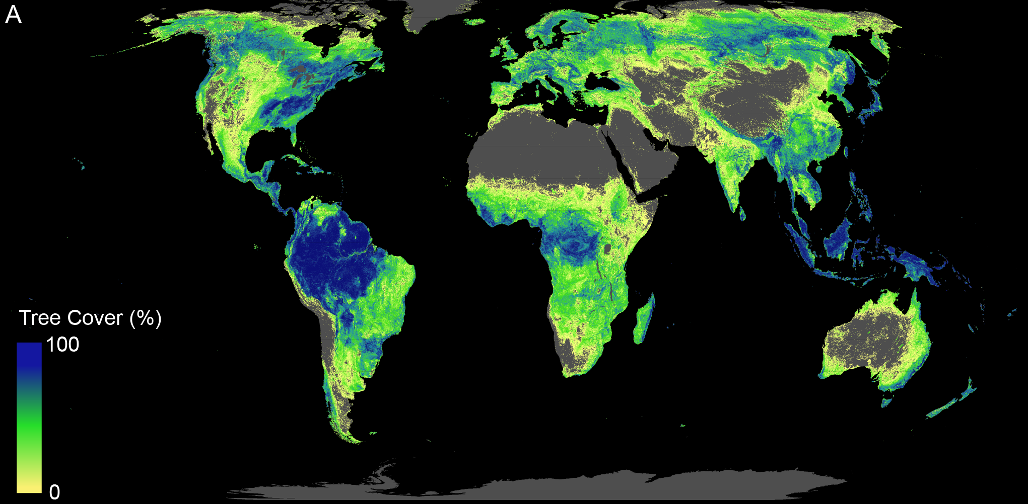 Map of potential global tree coverage