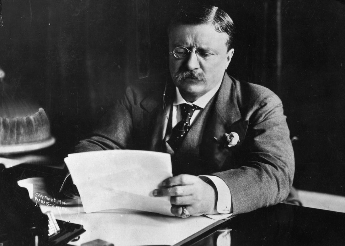 President Theodore Roosevelt looking at papers on a desk