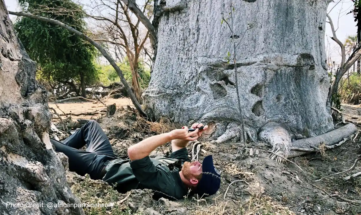 Prince Harry laying on the ground taking photo of tree