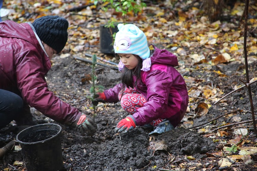 Little girl and parent planting a tree