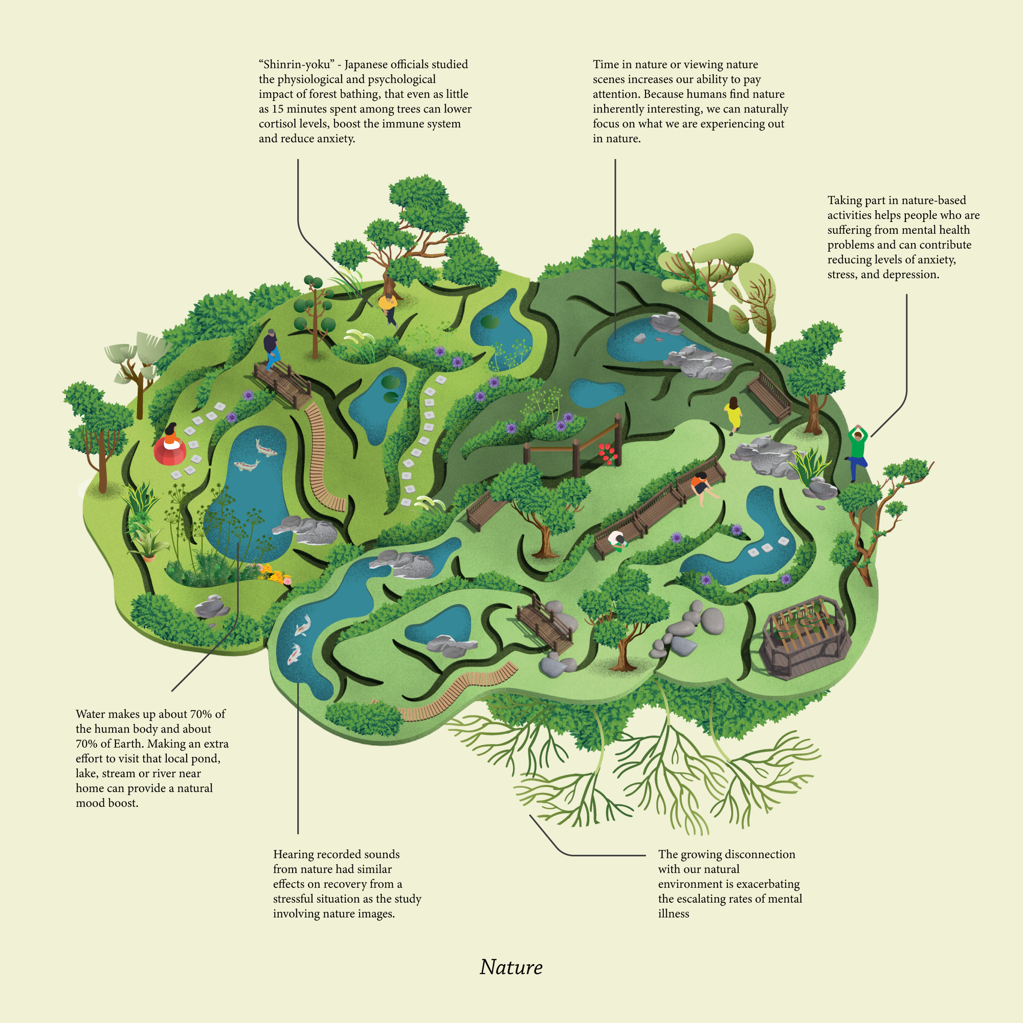 illustrated image of the human brain with lots of trees and greenery within and around it