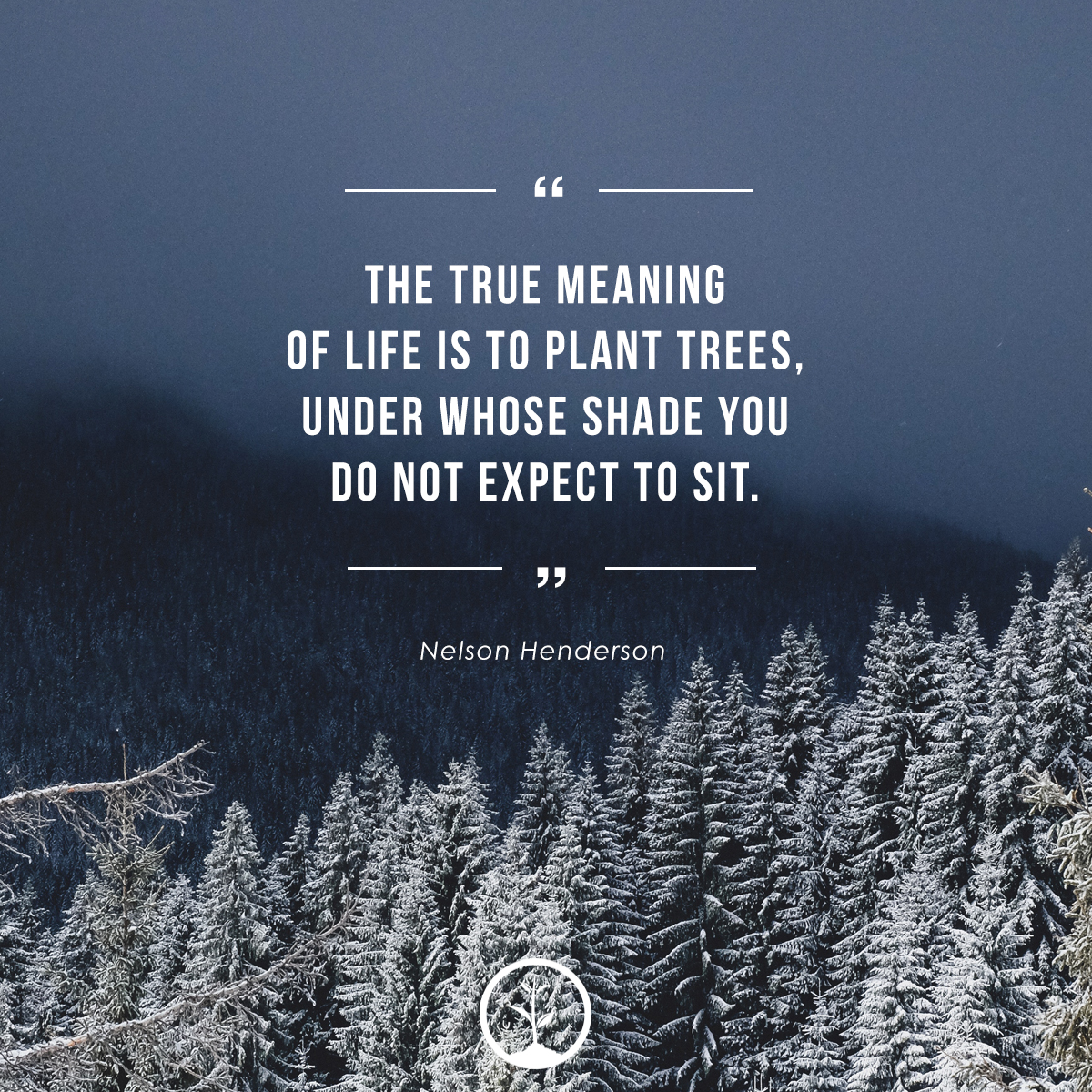 Inspirational Quotes About Trees | One Tree Planted