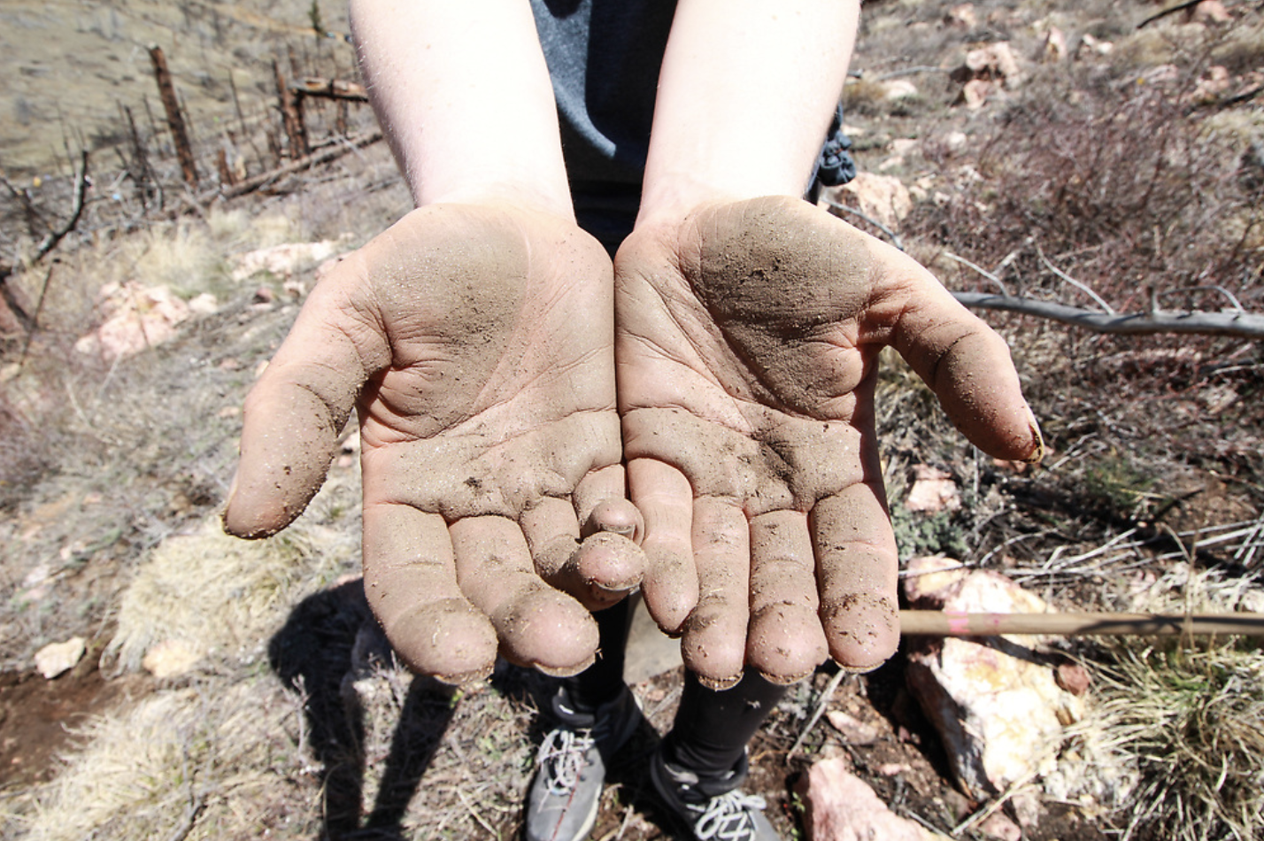 two hands with dirt