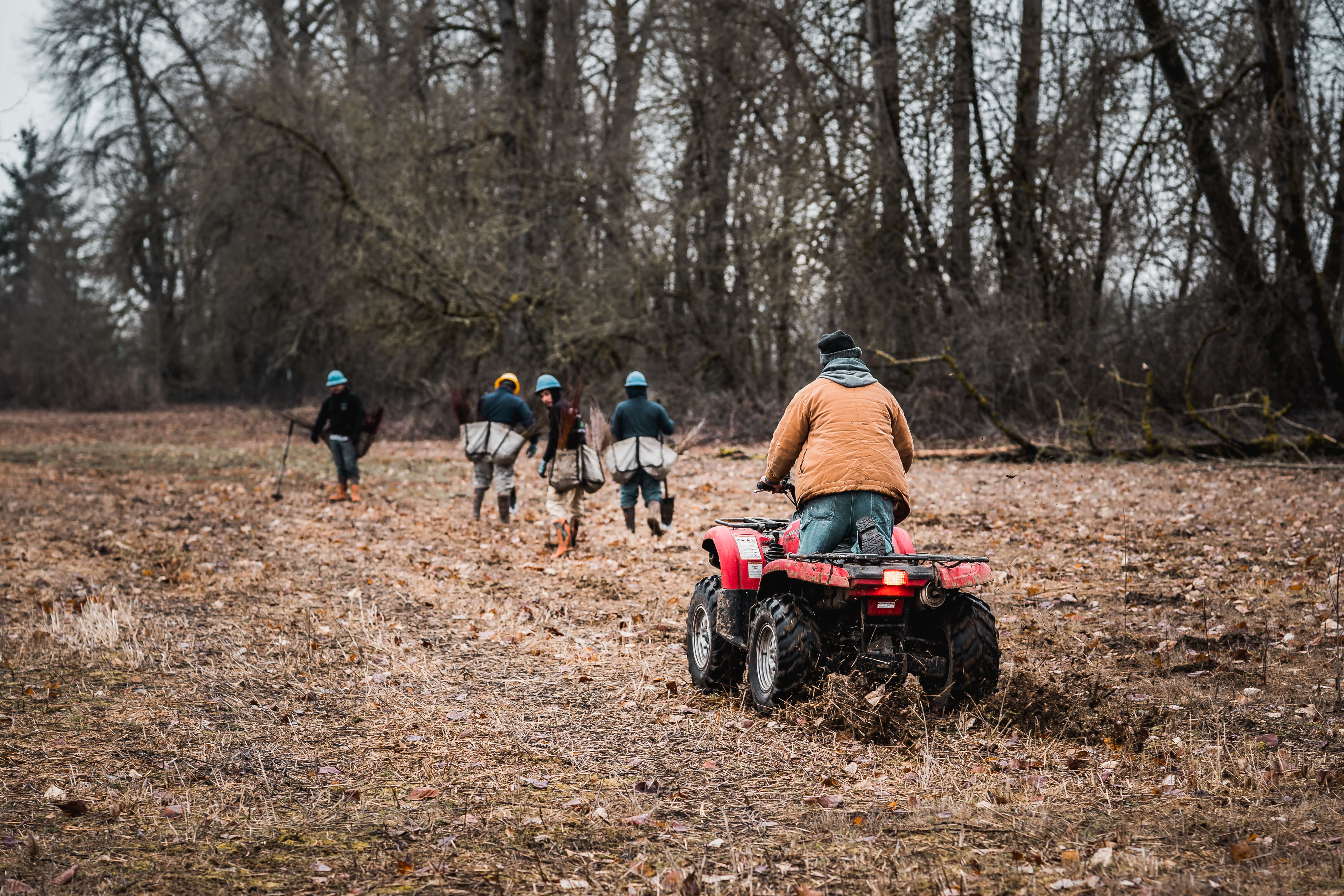 tree planters walking and riding an ATV