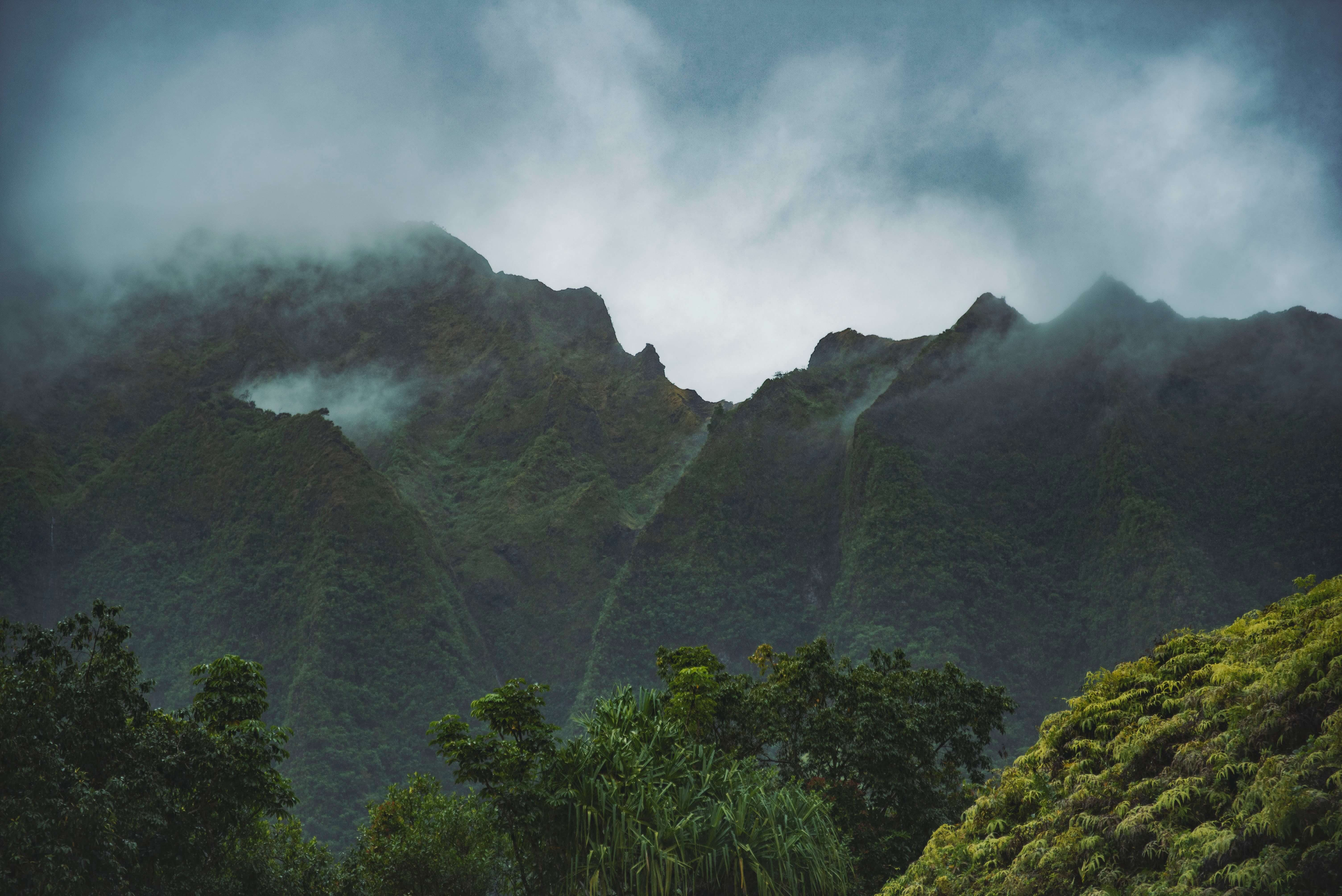 Fog over forested mountains