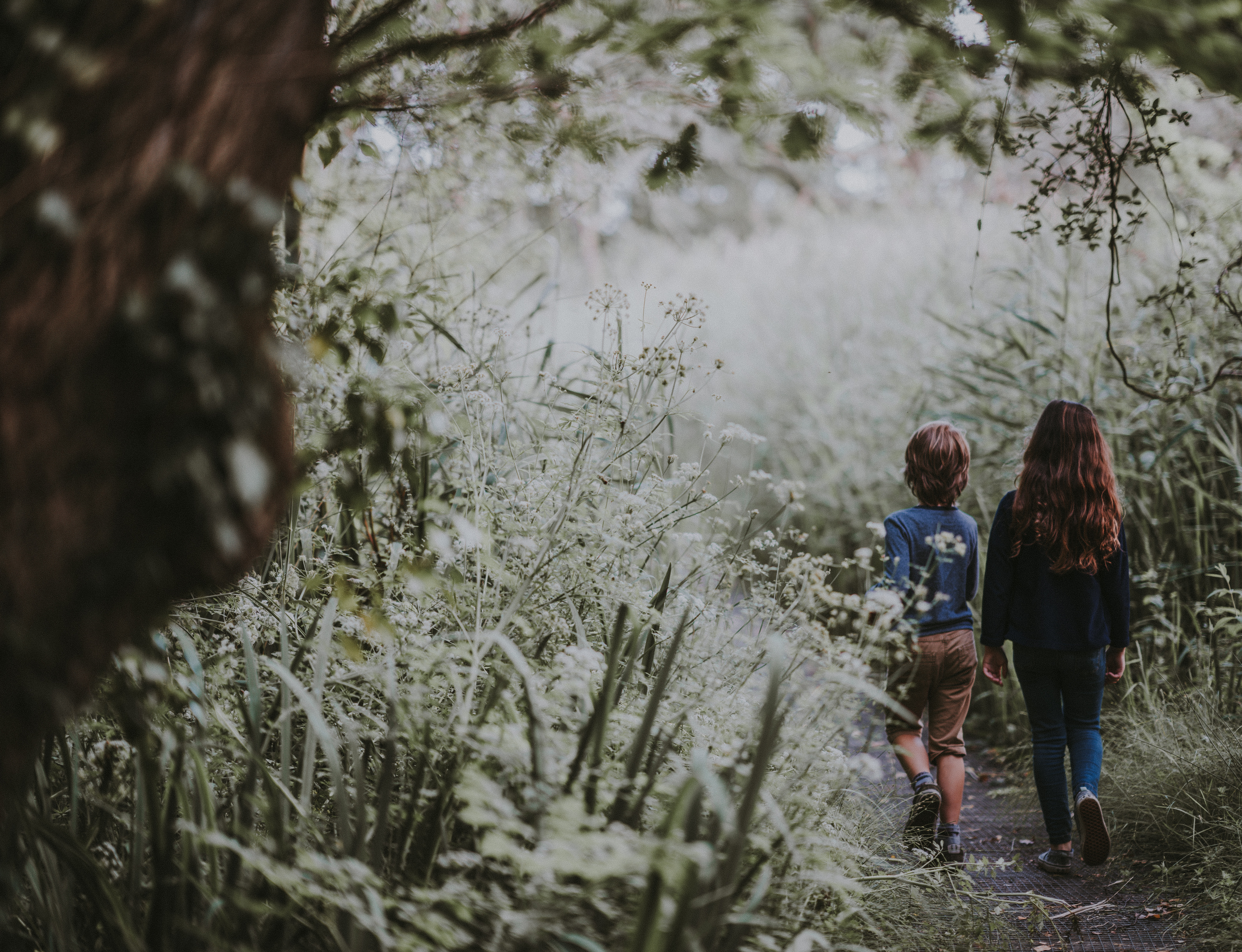 two kids walking down a forest path
