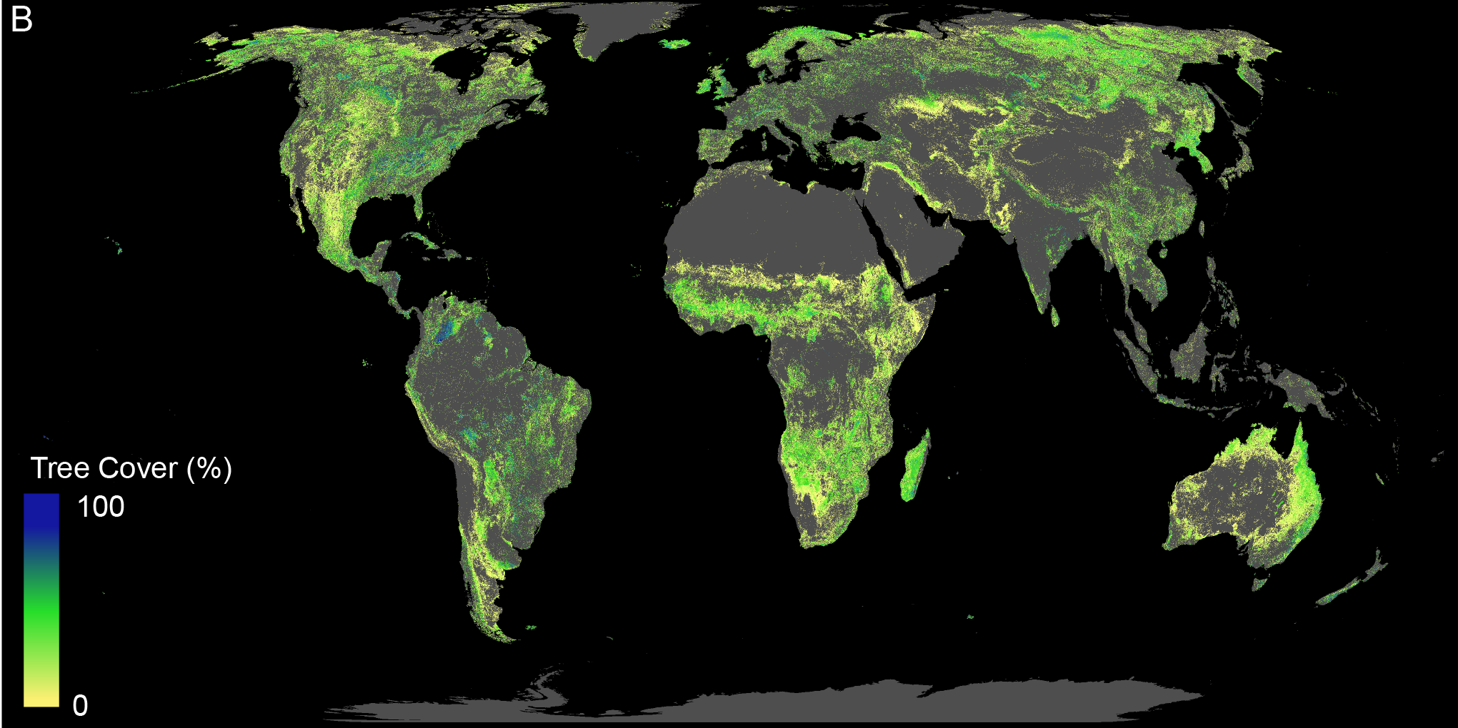 map of current global tree coverage
