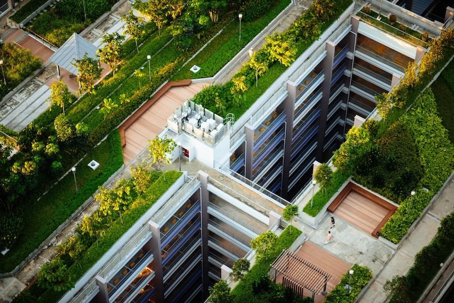 rooftop garden from above, a building with greenery on the roof