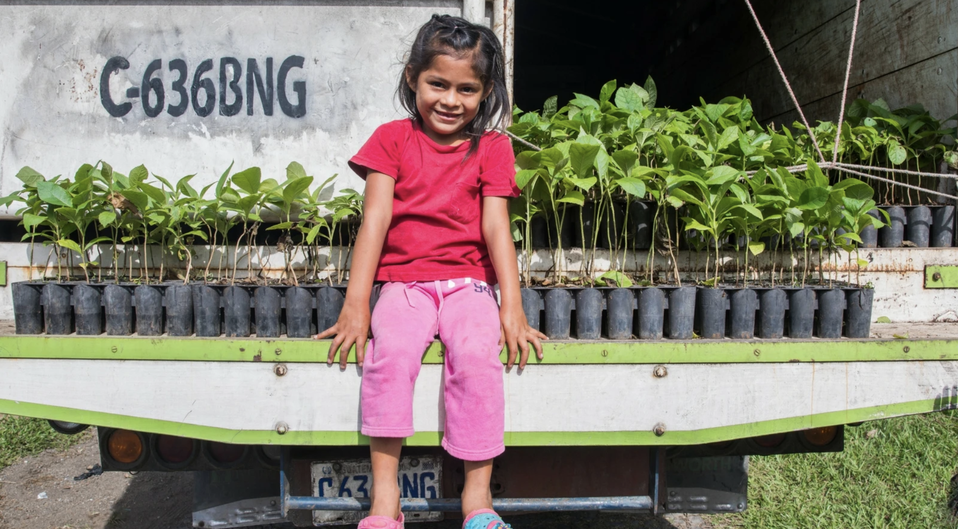 Little girl with pink pants sitting on truck with saplings