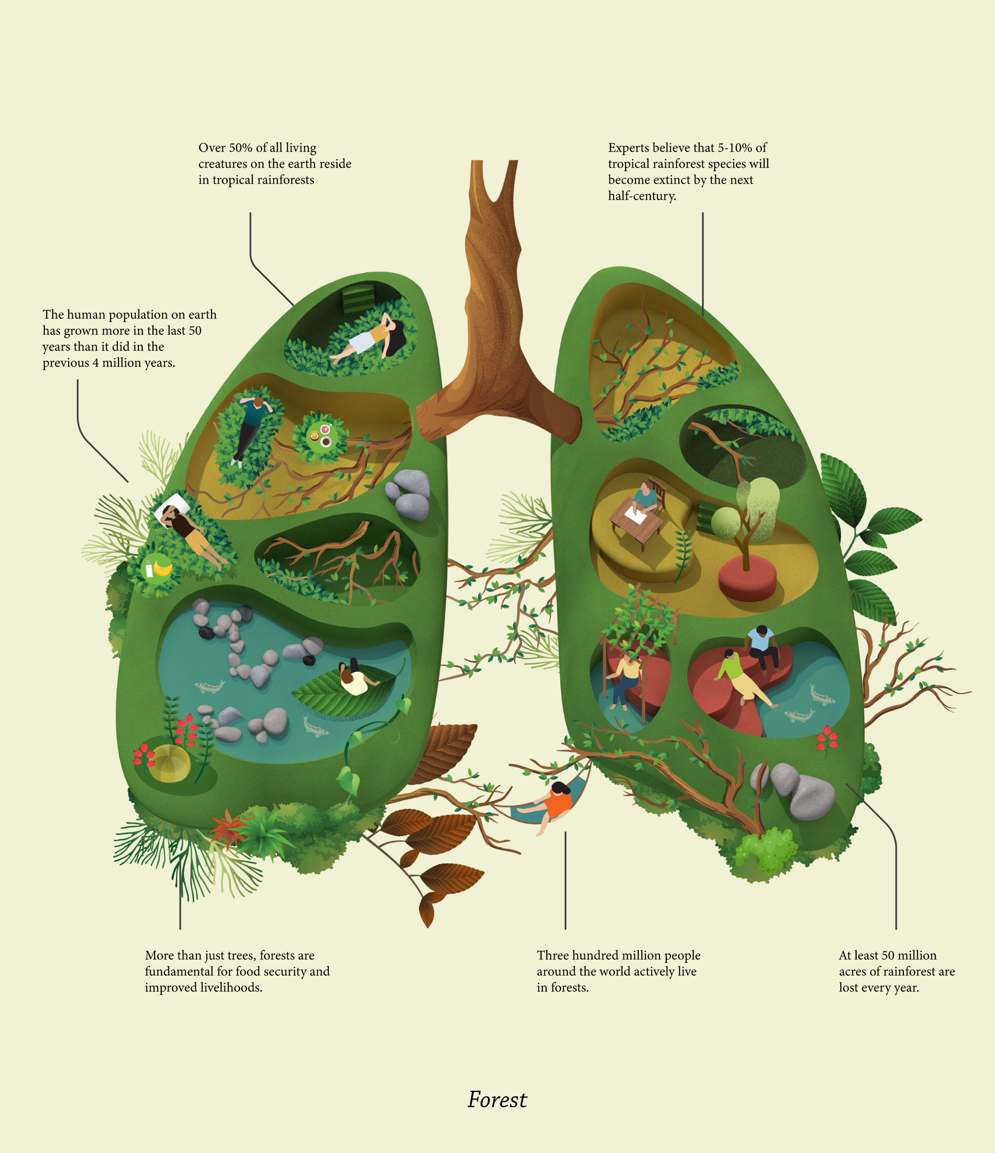 illustrated image of human lungs with trees, greenery, and people in different compartments