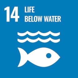 Sustainable Development Goal 14: Life Below Water