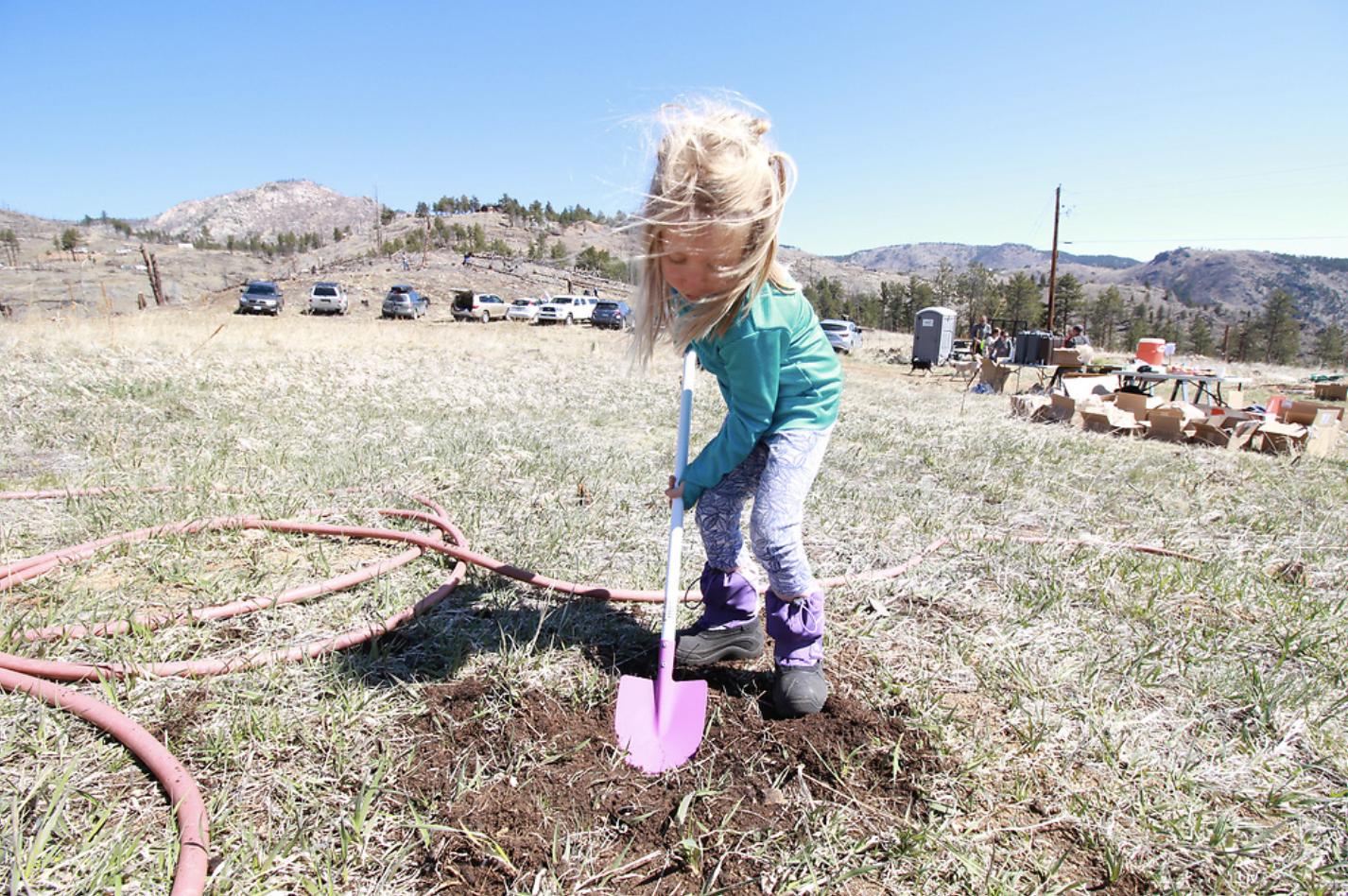 little girl with pink shovel
