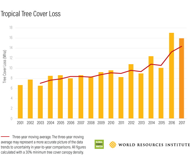 bar graph showing tropical tree cover loss