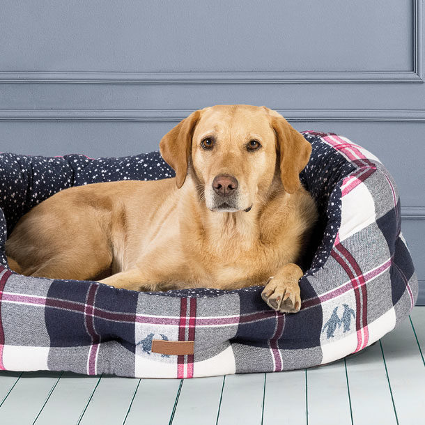 FatFace Luxury Dog Beds
