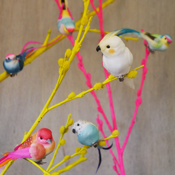 Feather Bird Clips
