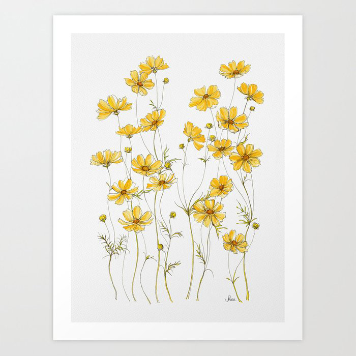 Yellow Cosmos Flowers Art Print by Jessica Rose