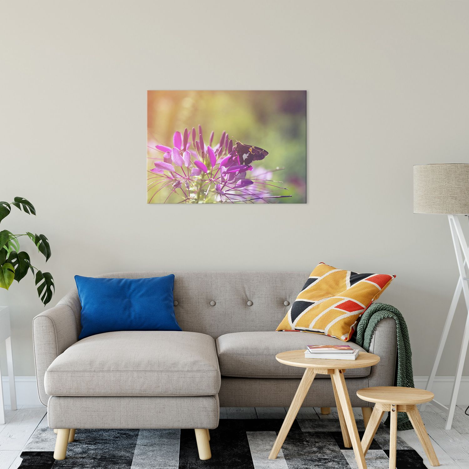 Spider Flower in Glory Light With Spotted Moth Nature Photography Wall Art Prints Unframed and Fine Art Canvas Prints