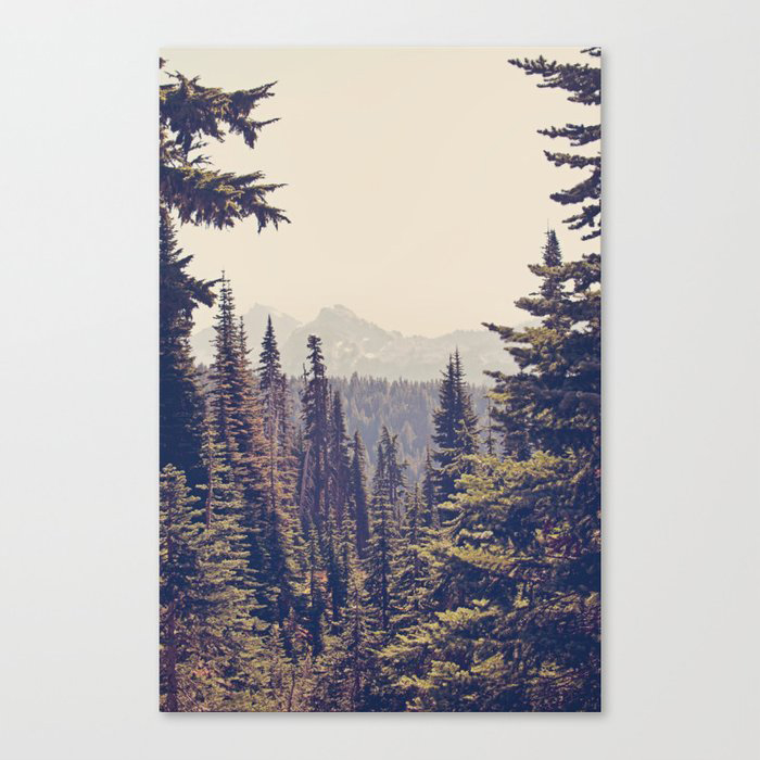 Mountains Through the Trees Canvas Print by Kurt Rahn