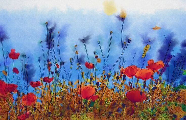 Summer Poppy Field Nature Wall Art Canvas Print Designed by Paula Belle Flores