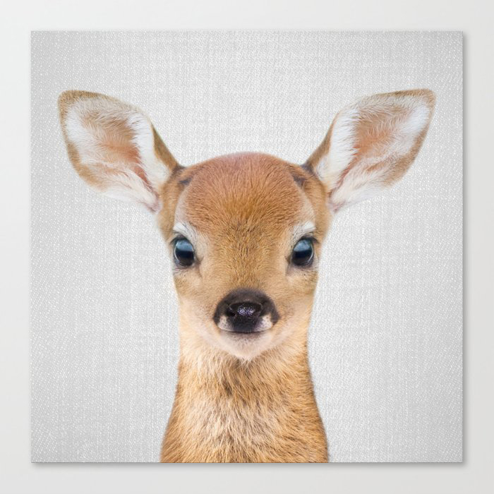 Baby Deer - Colorful Canvas Wall Art Print by Gal Design