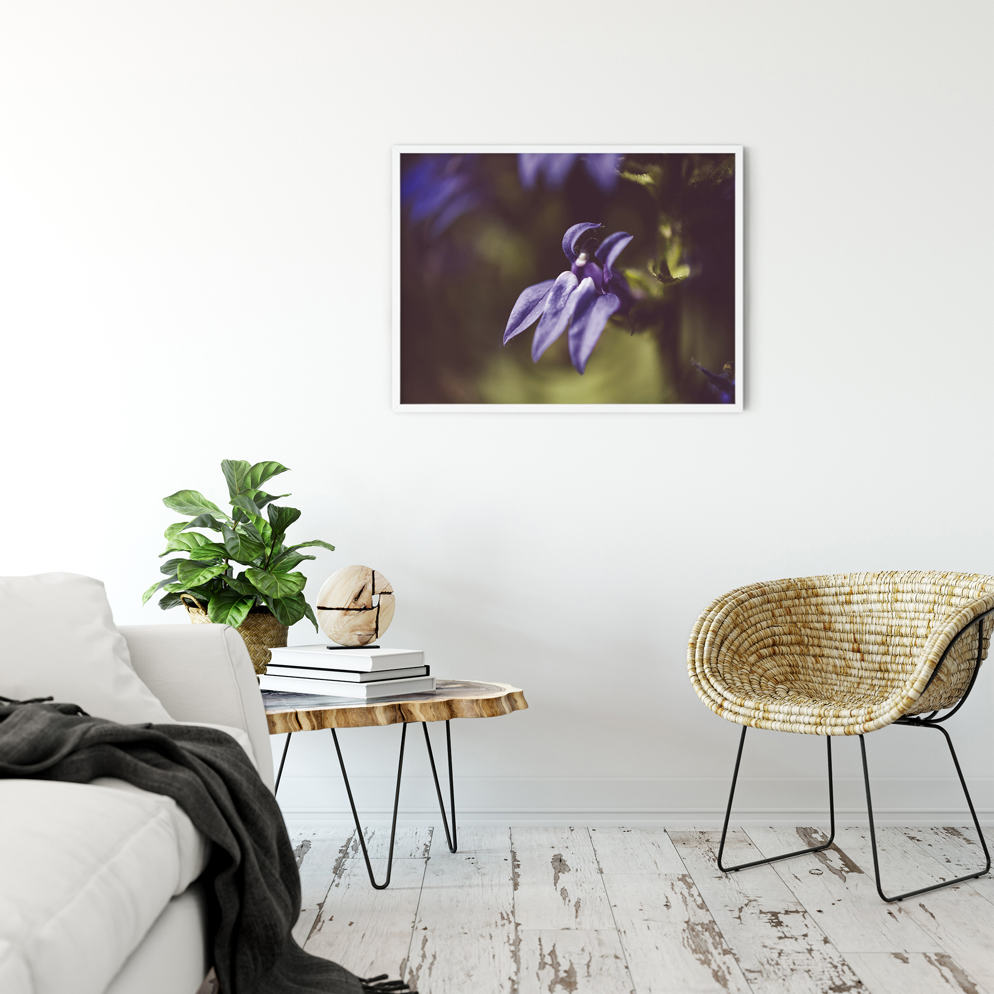 Dramatic Blue Lobelia, Blue Cardinal Flower Nature Photography Wall Art Prints Unframed and Fine Art Canvas Prints