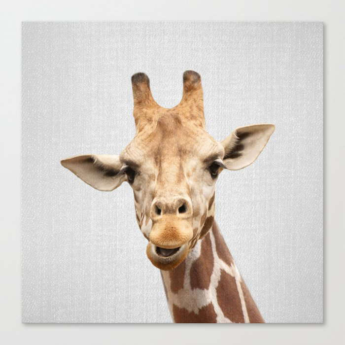 Giraffe 2 - Colorful Canvas Wall Art Print by Gal Design